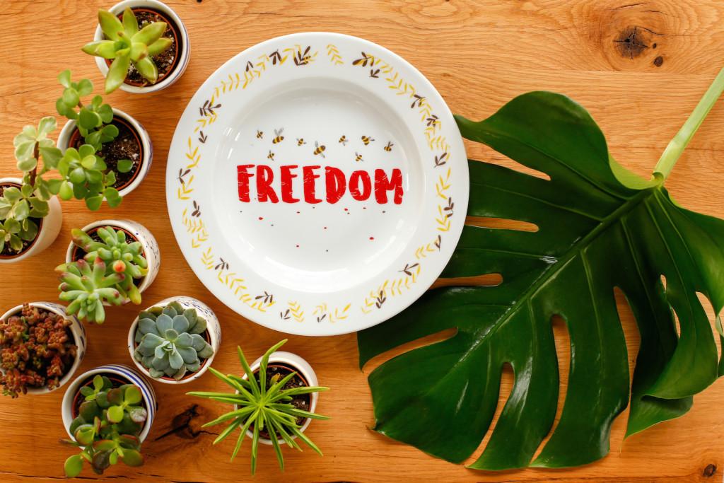 farfurie chicineta freedom